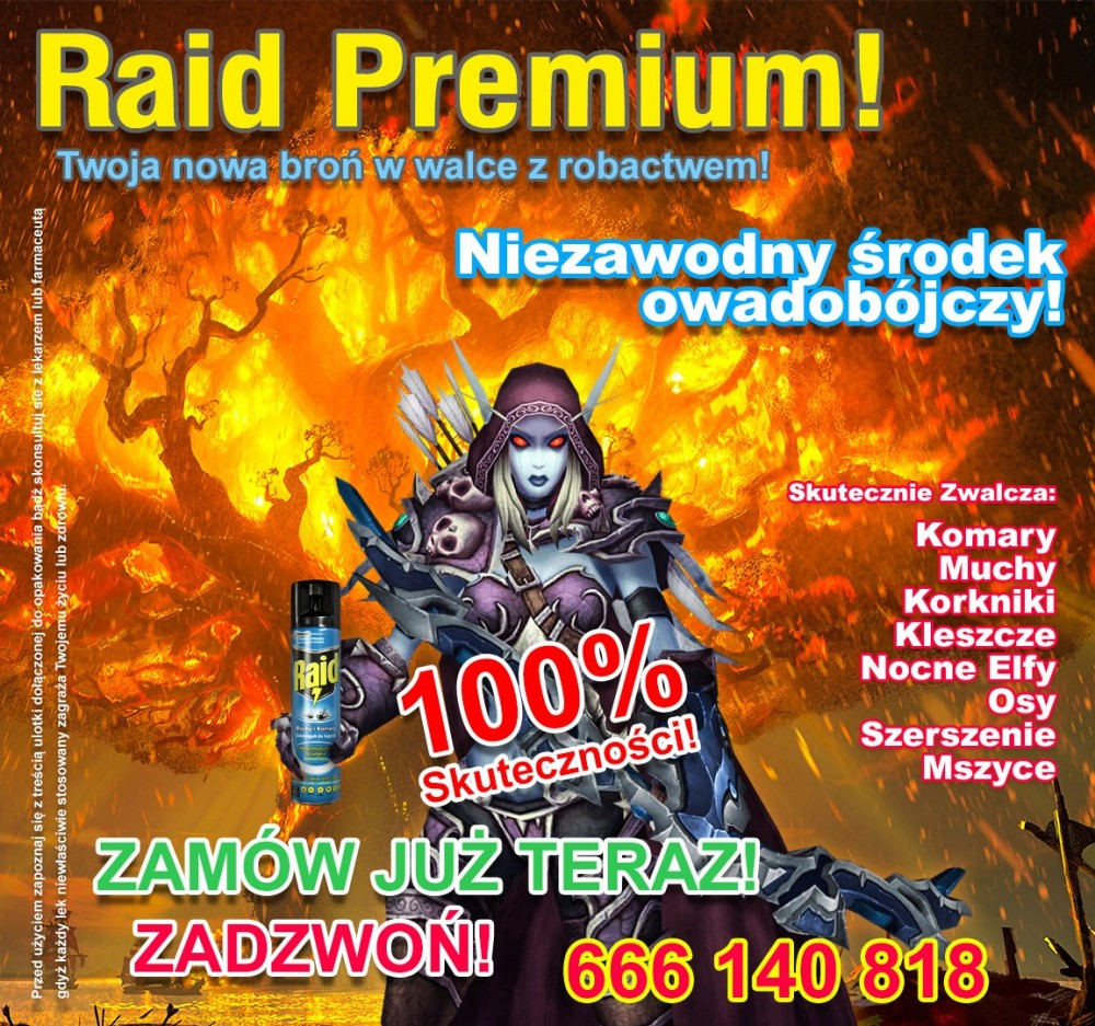 raid_f.jpg